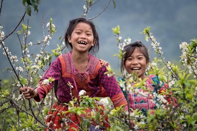 Cuối tuần hẹn hò mùa hoa mận trắng ở Mộc Châu