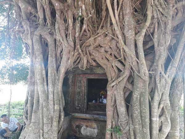 Ngôi miếu cổ là nơi thành lập lực lượng vũ trang tỉnh Quảng Bình, đã được công nhận là di tích lịch sử.