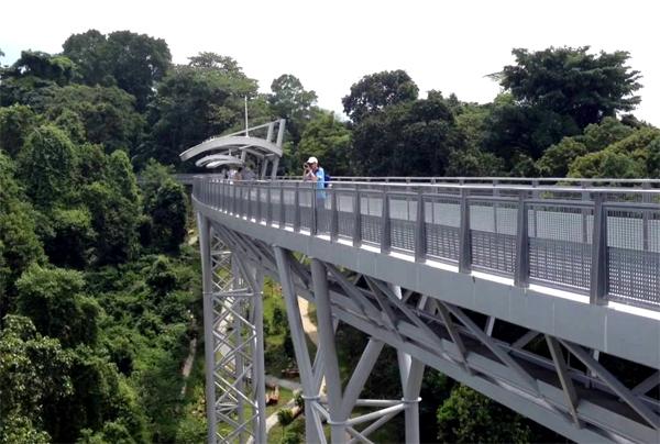12-cay-cau-chup-anh-sieu-ao-o-singapore-2