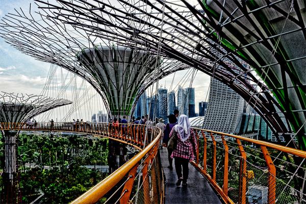 9-cay-cau-de-chup-anh-sieu-ao-o-singapore-1