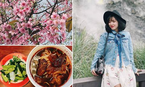 Chuyến đi Đài Loan mùa hoa anh đào rực rỡ chỉ với 8,5 triệu đồng