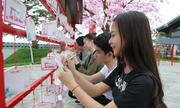 Lễ hội Mặt trời mọc mang đậm phong cách Nhật tại Hạ Long