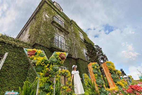 Sau khi dạo qua hết các tuyến phố, khu vực khuôn viên khách sạn Morin chắc chắn sẽ là một trong những điểm check-in tuyệt vời nhất của những tín đồ yêu hoa. Nổi bật trên bức tường xanh khổng lồ, với những khung cửa trắng mộng mơ, là cả vườn tiểu cảnh sống động, đủ sắc màu.