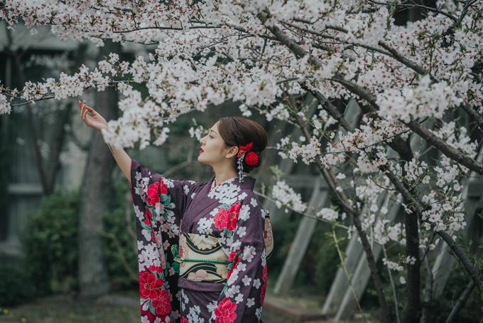 bao-anh-mac-kimono-khoe-sac-duoi-hoa-anh-dao-o-nhat-ban-2