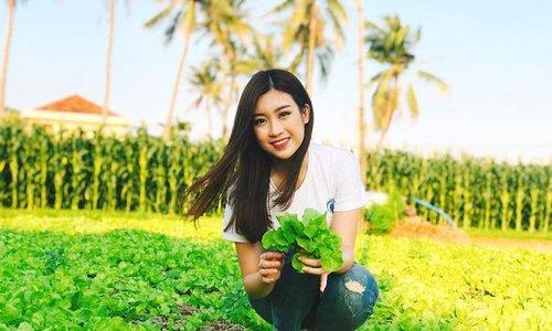 Video hoa hậu Mỹ Linh quảng bá Phú Yên