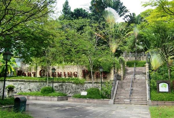 tu-sang-den-dem-kham-pha-m-thuc-phong-phu-o-singapore-1