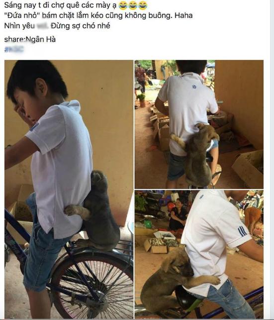 anh-cho-con-ngoi-sau-xe-om-chu-nhu-mot-nguoi-ban-hut-like-facebook