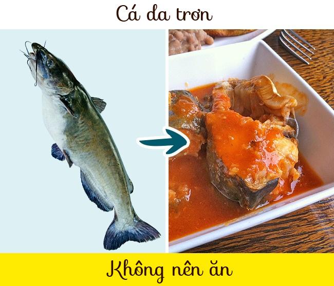 8-loai-ca-hai-san-an-cang-it-cang-tot