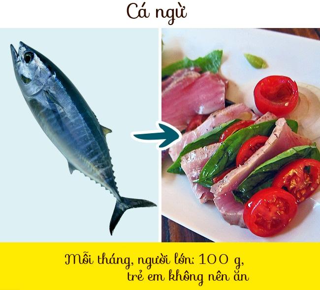 Cá ngừ chứa rất nhiều thủy ngân, đặc biệt là cá ngừ vây đen và cá ngừ vây xanh. Ngoài ra, có ít cá ngừ quýt quý hiếm trong các cửa hàng vì nó gần như tuyệt chủng. Tất cả cá đều đến từ các trang trại, nơi nó được cho ăn bằng kháng sinh và hoocmon.