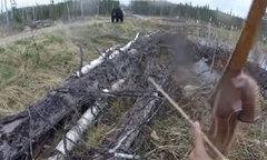 Thợ săn bị gấu đen tấn công
