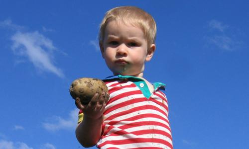 'Thủ thuật khoai tây' đối phó với thói ăn vạ của trẻ