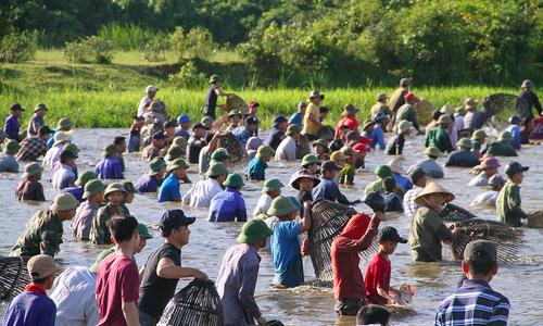 Hàng trăm người xuống đầm bắt cá dưới nắng như đổ lửa