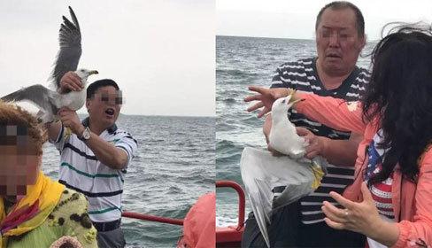 Du khách Trung Quốc gây phẫn nộ vì bắt chim hải âu để chụp ảnh