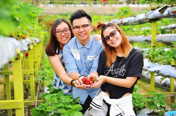 nhung-diem-du-lich-nen-kham-pha-tai-singapore-va-malaysia-8