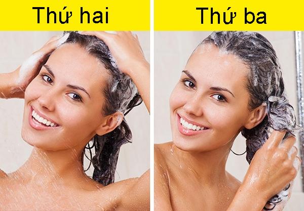 8. Càng gội đầu nhiều càng khiến tóc nhanh bẩn