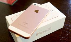Apple có thể khai tử iPhone SE