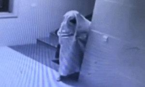 Kẻ trộm giả ma để đột nhập vào chung cư