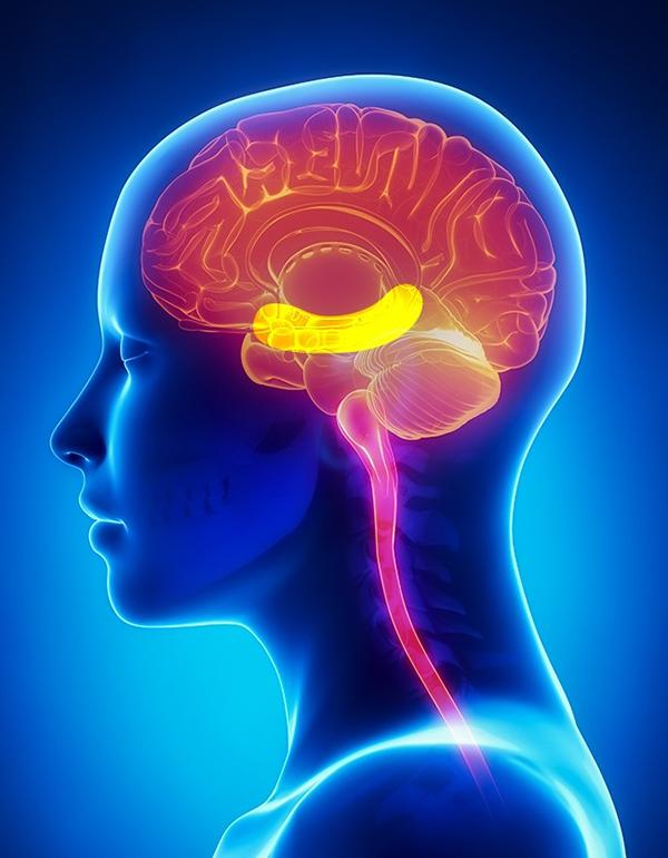 7. Cải thiện trí nhớ Vitamin E và chất béo trong hạnh nhân giúp tăng cường khả năng ghi nhớ và sự tập trung.