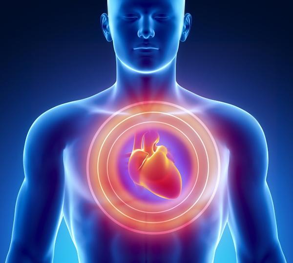 5. Ngăn ngừa bệnh tim Magie, chất chống oxy hoá và chất béo không bão hoà trong hạnh nhân giúp ngăn ngừa các bệnh tim mạch.