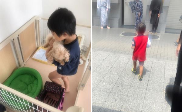 Ichikawa Ebizo chia sẻ ảnh của con trai trên blog cá nhân.