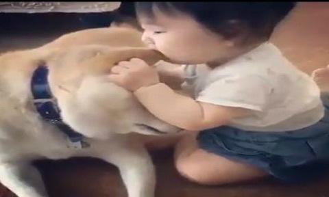 Bé gái nghịch ngợm cắn tai chó cưng