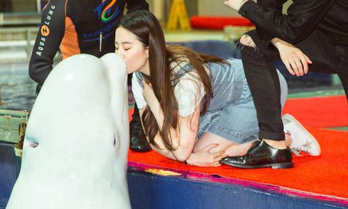 Lưu Diệc Phi thích thú vì lần đầu được hôn cá heo trắng