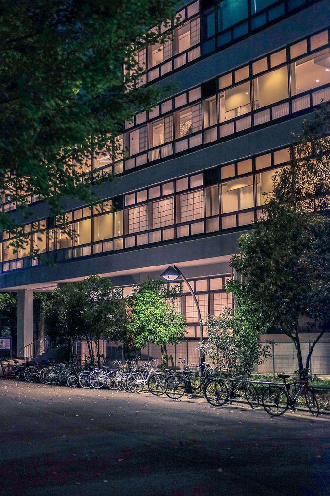 Bộ ảnh Tokyo về đêm khiến ai xem cũng muốn một lần ghé qua