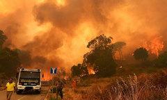 Lính cứu hỏa Italy tự tạo hỏa hoạn để kiếm thêm thu nhập