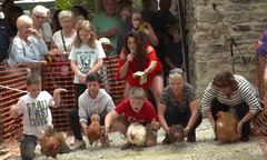 Quán rượu ở Anh tổ chức giải đua gà mái thế giới