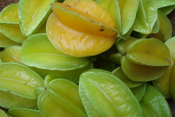Khế giàu vitamin C và các chất chống lão hoá, rất tốt cho da.