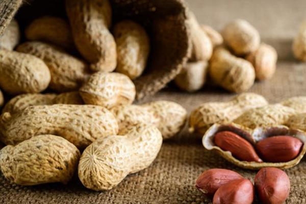 Đậu phộng có chứa nhiều axit folic, axit không bão hòa đơn béo, có tác dụng làm giảm cholesterol trong máu cao.