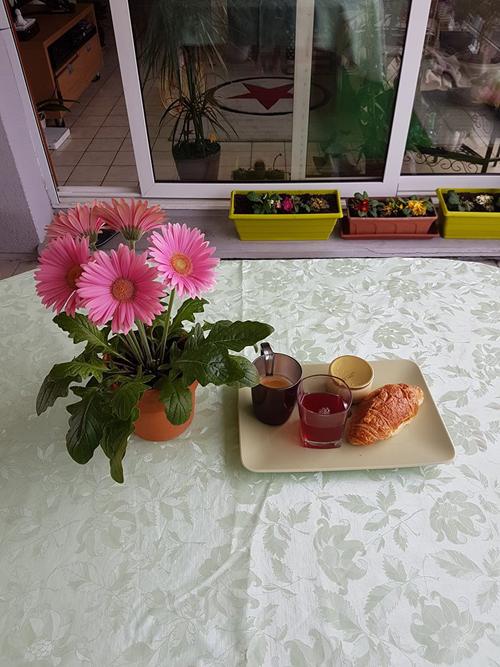ban-cong-bai-tri-nhu-quan-cafe-cua-co-dau-viet-tai-phap-6