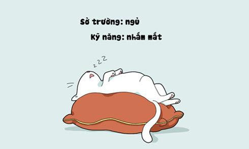 Ảnh chế vui về những người mê 'ngủ nướng'