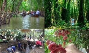 5 khu du lịch sinh thái gần Sài Gòn cho người chưa biết đi đâu vào dịp lễ 2/9