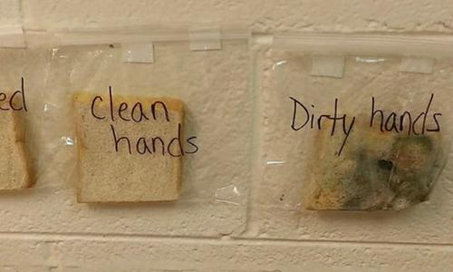 Thí nghiệm bánh mì khiến trẻ lười đến mấy cũng tự giác rửa tay