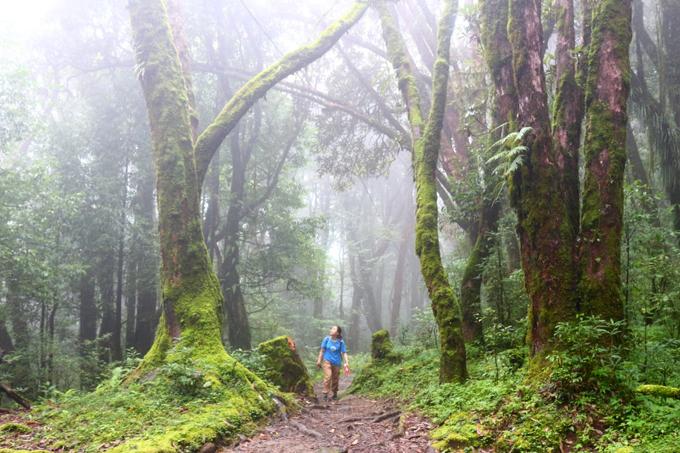 chun-bi-nhung-gi-cho-chuyen-trekking-nepal-2