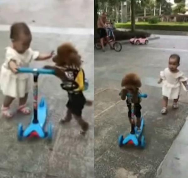 cho-cuop-scooter-cua-em-be-lai-di-thoan-thoat