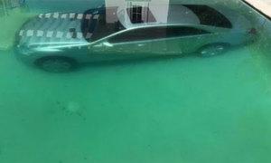 Mẫu nữ dìm xe sang của bạn trai xuống bể bơi để trả thù
