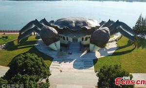 Trung Quốc xây dựng bảo tàng ba tầng hình con cua
