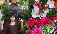 50 gốc hoa khoe sắc trên ban công 2 m2 của bà chủ tiệm nail
