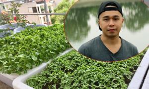 Chàng kỹ sư CNTT 9X mê trồng rau sân thượng hơn đi chơi