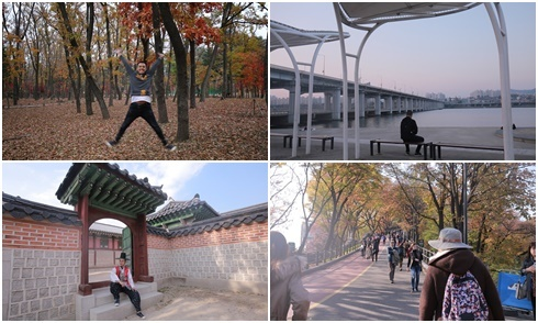 Gợi ý du lịch tự túc Seoul 5 ngày cuối thu chỉ 11 triệu đồng