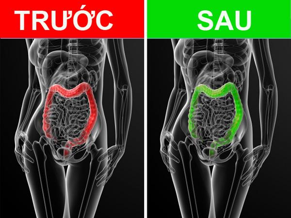 Dầu ô liu giúp bảo vệ tế bào, ngăn ngừa nguy cơ ung thư đại tràng. Uống dầu ô liu khi bụng đói cũng giúp giải quyết tình trạng táo bón.