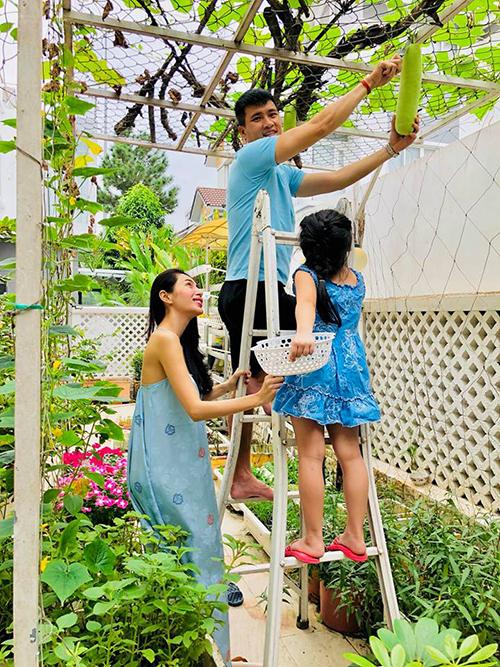 Khoảnh khắc đẹp của gia đình Thuỷ Tiên - Công Vinh khi cả nhà cùng nhau hái quả bầu trong vườn.