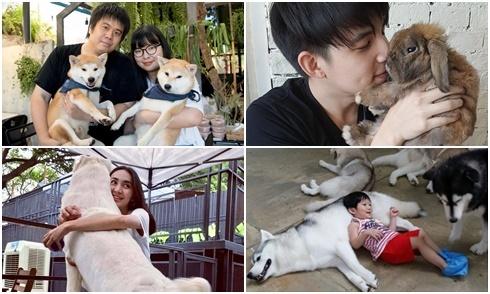 9 quán cafe thú cưng ở Thái Lan luôn đông khách