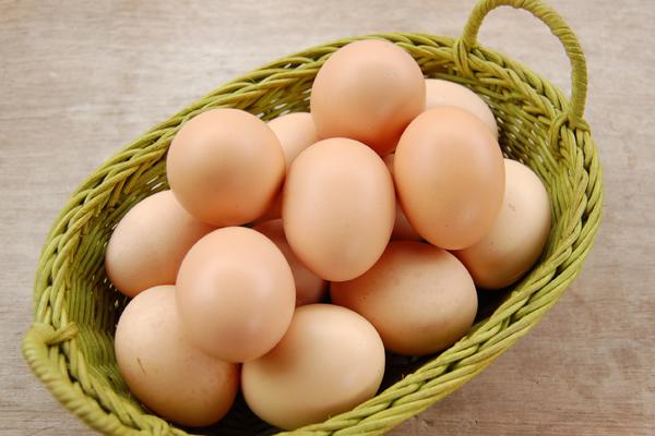 Trứng có chứa lượng sắt cao và các chất dinh dưỡng khác. Chủ yếu là lòng đỏ trứng, với các khoáng chất và vitamin, mà những người có sức khỏe kém được khuyến khích ăn trứng luộc hoặc trứng chiên mỗi ngày.