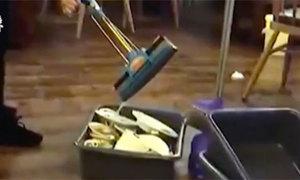 Nhà hàng bị đóng cửa vì nhân viên vắt nước lau sàn vào chậu bát đĩa