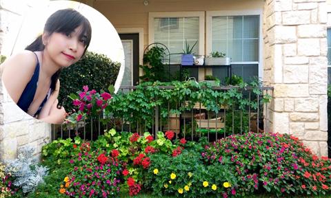 Góc ban công phủ đầy rau và hoa của nữ du học sinh Mỹ