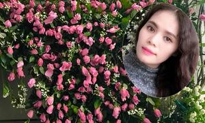 'Suối' hoa hồng 300 bông mẹ cắm tặng con gái ngày sinh nhật