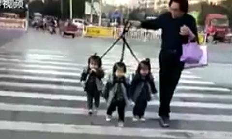 Mẹ sinh ba bày cách dắt đàn con sang đường đi học